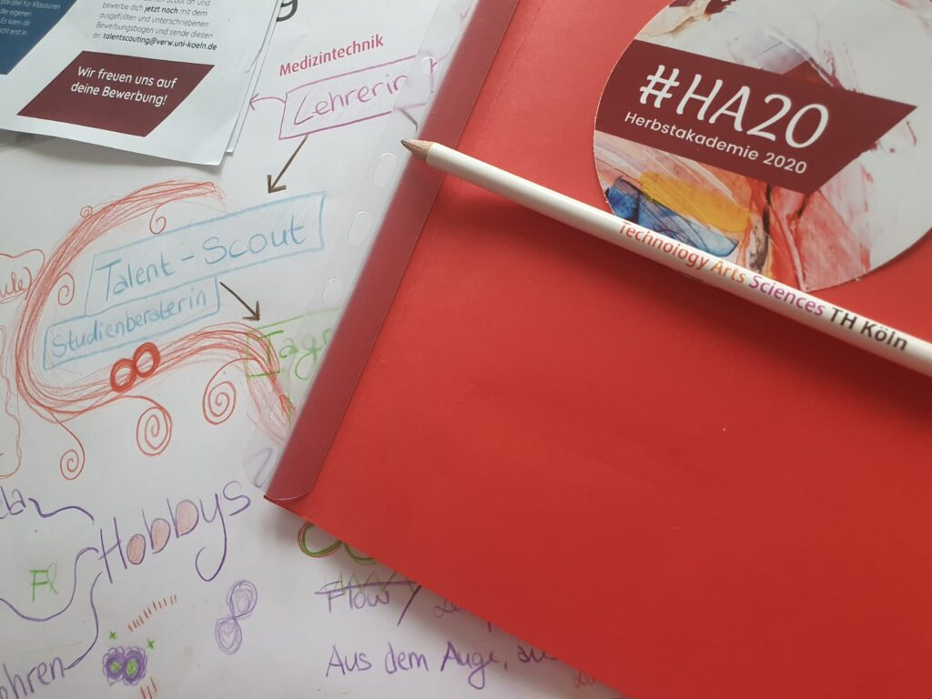 #HA20 – Die digitale Herbstakademie 2020